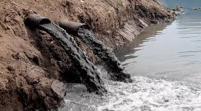 Responsabilidade penal da pessoa jurídica por crimes ambientais