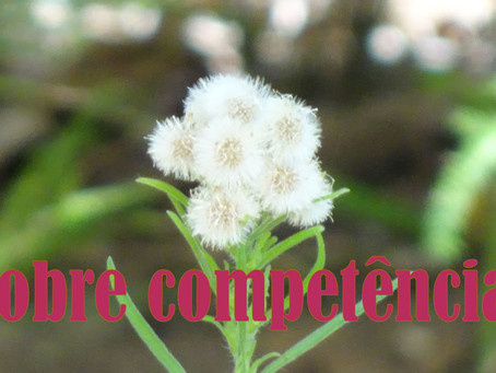 Sobre competências. About competencies.