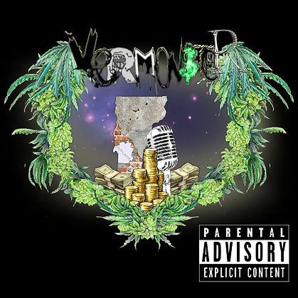 VERMON$TER Album cover.jpg