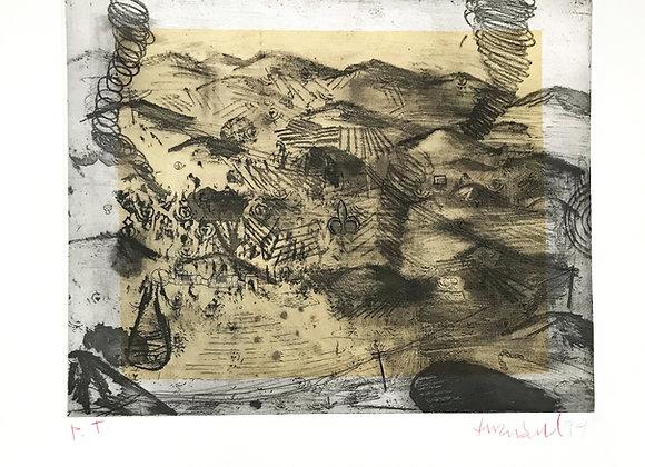 Roberto Turnbull -  Volcanes con flor