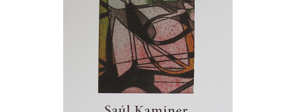 Saúl Kaminer