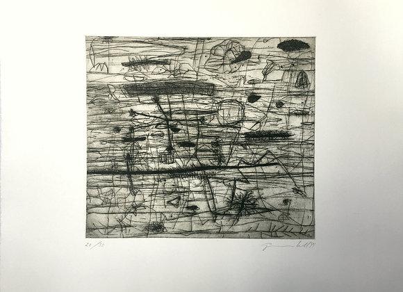 Ilse Gradwohl - Sin título
