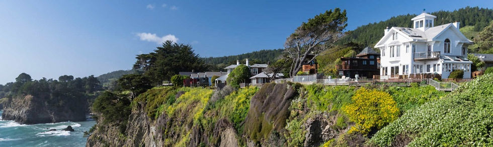 Elk-on-the-Mendocino-coast-CR-VIsit-Mend