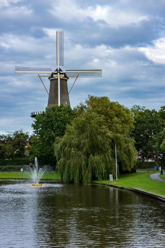 12-DutchWindmill.jpg