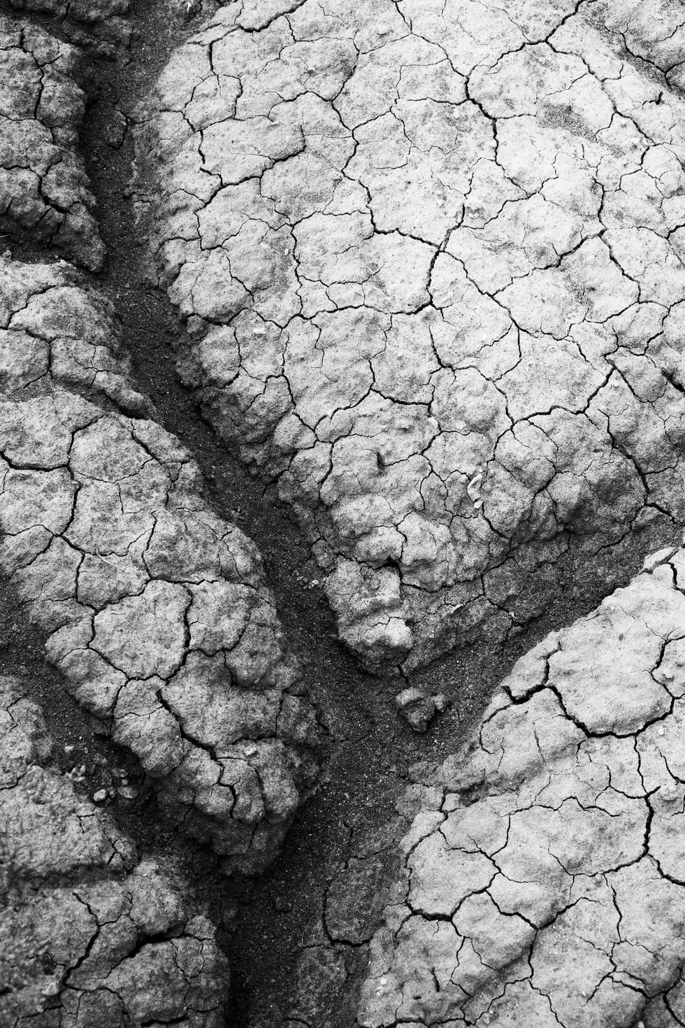 Dry Earth 1