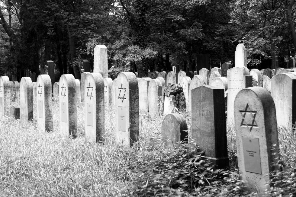 Jewish Graves Vienna