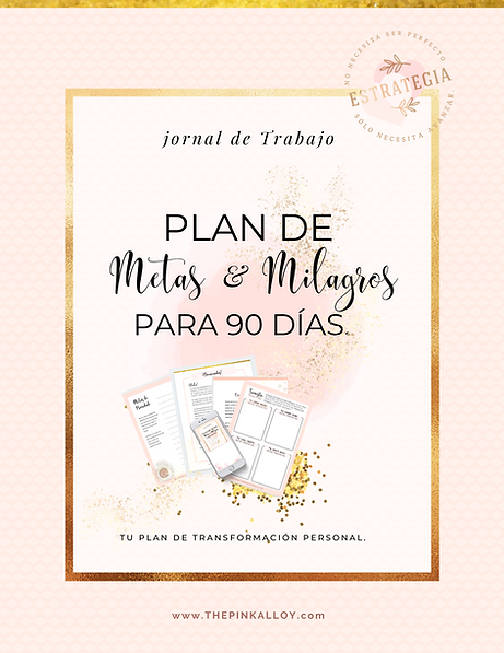 PLAN DE METAS  &  MILAGROS DE PARA 90 DI