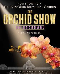 NY Botanical Garden Orchid Show '12