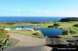 SOG_8193 Tenerife .jpg