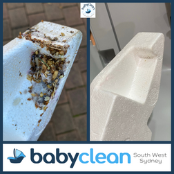 BabyClean SWS Britax Maxi Guard Foam Shell Insert.png