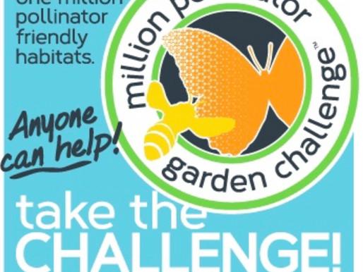 Support Pollinator Gardens