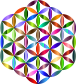 flower-of-life-2727562_960_720.png