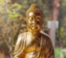 Buddha_oben web.png