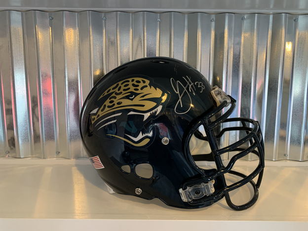 Jaguar decor