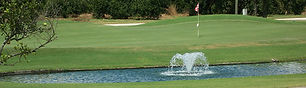 river_greens_golf_course_cover_picture.j