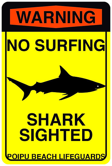 Shark Sighted Metal Sign