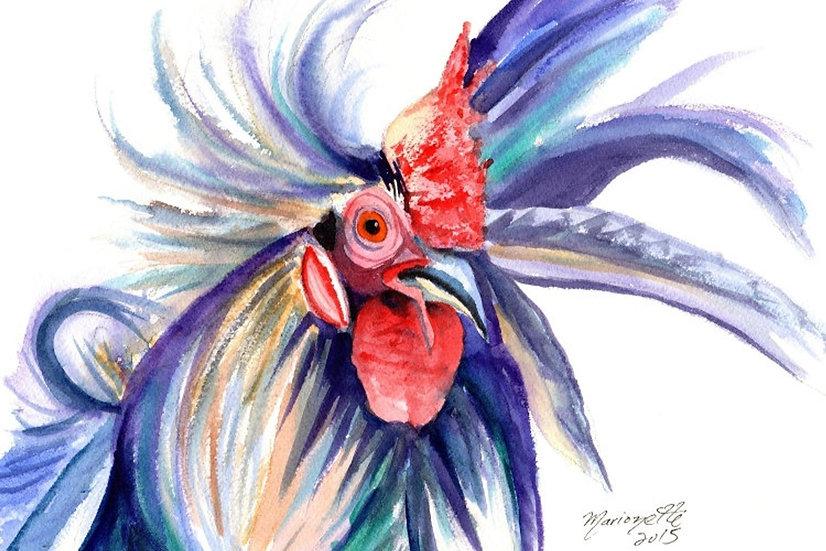MT Wild Rooster Postcard