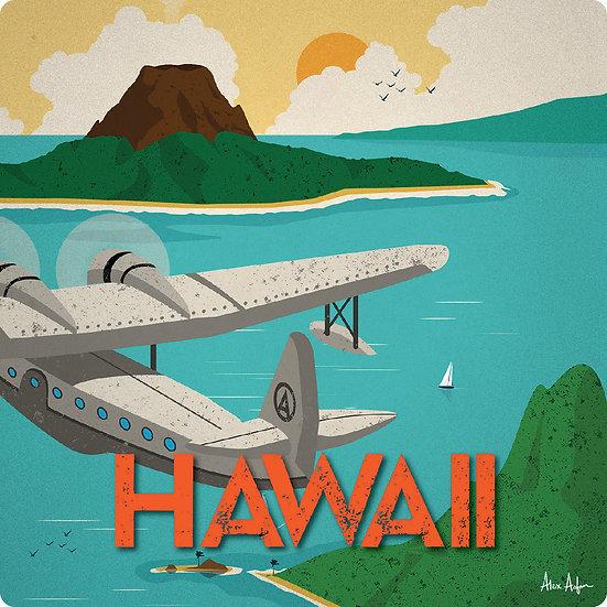 AA Hawaii Coaster