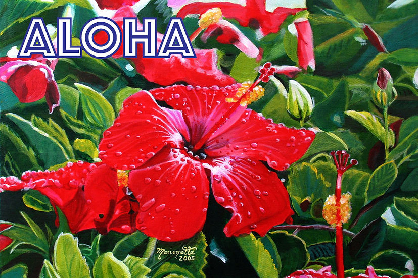MT Red Hibiscus Postcard