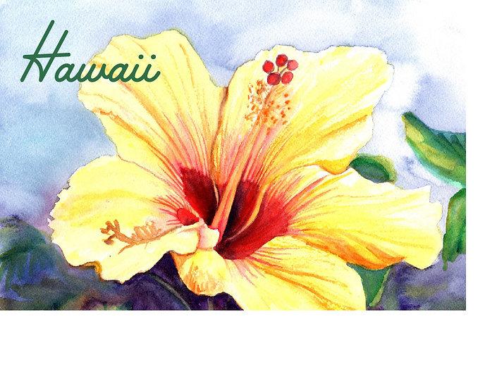 MT Yellow Hibiscus Postcard