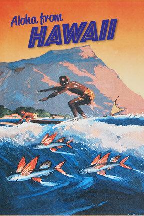 Orange Surfer Postcard