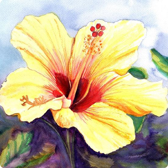 MT Yellow Hibiscus Coaster
