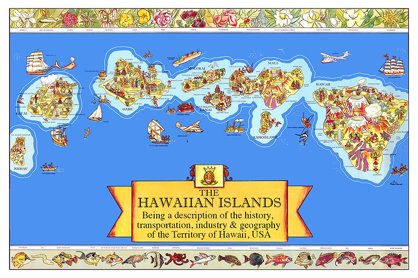 Dole Map Postcard