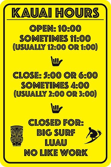 Hawaii Hours Metal Sign