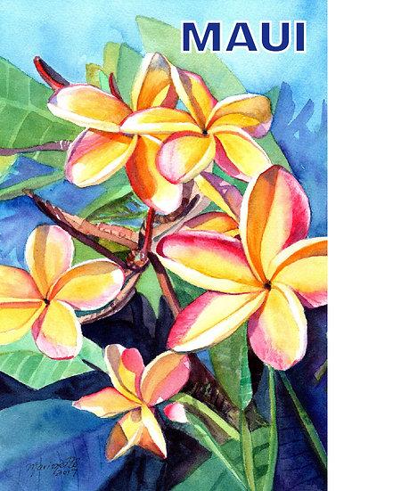 MT Plumeria Fever Postcard