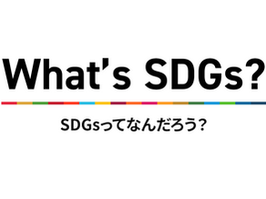 【掲載】What's SDGs?がSDGs.TVに掲載されました