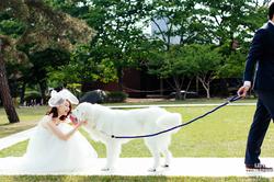 Pre-Wedding Snap