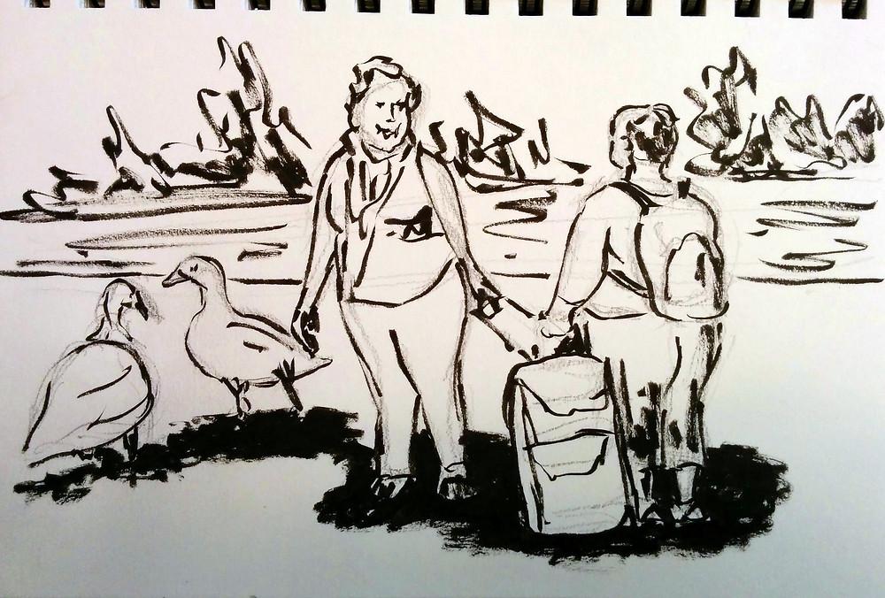 אווזות בפארק
