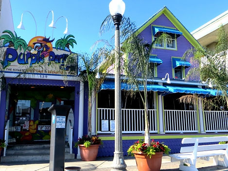 Purple Parrot Bar.jpg