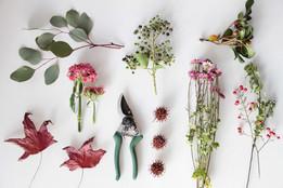 Workshop: arreglos de flores naturales