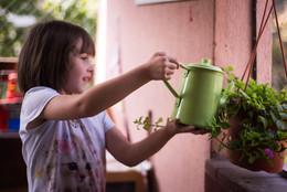 El cuidado de una planta