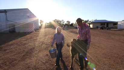 Innovative Cattle Stations Trailer