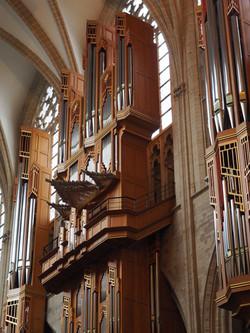 Kathedraal Brussel (22)