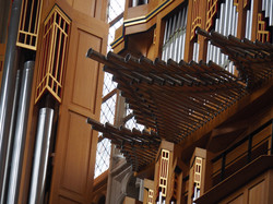 Kathedraal Brussel (24)