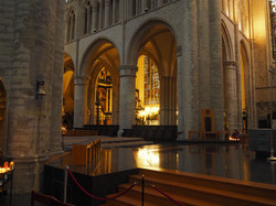 Kathedraal Brussel (33)