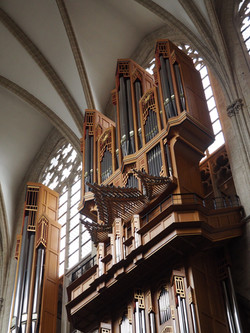 Kathedraal Brussel (2)