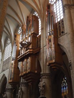 Kathedraal Brussel (20)