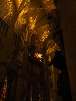 Kathedraal Brussel (63)