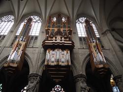 Kathedraal Brussel (4)