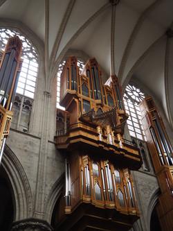 Kathedraal Brussel (11)