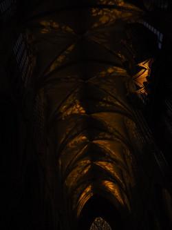 Kathedraal Brussel (50)