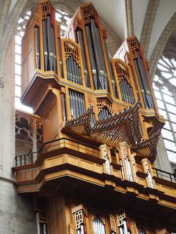 Kathedraal Brussel (12)