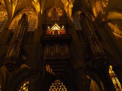 Kathedraal Brussel (65)