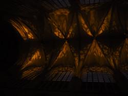 Kathedraal Brussel (52)