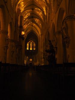Kathedraal Brussel (61)