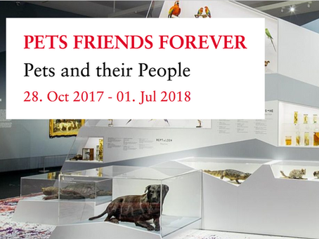 PETS FRIENDS FOREVER